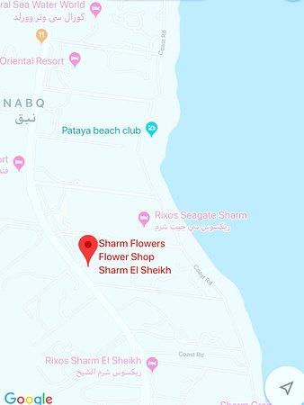 sharmflower.com South Sinai Governorate, Sharm El Sheikh, Nabq, El Salam Road, Amwaj Hotel Shopping Arcade, Sharm Flowers Flower Shop 0121 040 4724 https://goo.gl/maps/sh7RjMHz3MV9DycbA