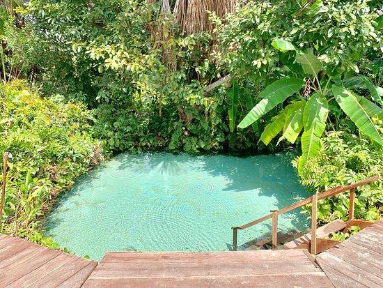 Mateiros, TO: Somos uma agência registrada e especializada em Expedições ao Parque Estadual de Jalapão - TO e Chapada das Mesas - MA. Oferecemos os seguintes serviços: Esportes Radicais de Aventura, Ecoturismo em veículos 4x4, Safari e Turismo Cultural.