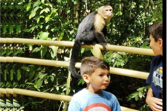 Puntarenas visite touristique