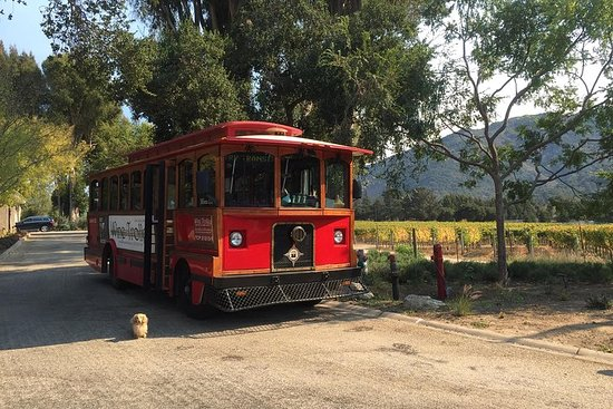 Wine Trolley's Trolley Special