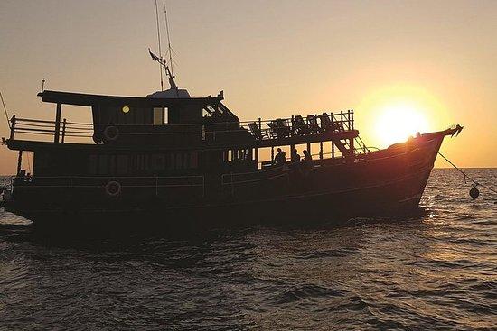 Halvdag Klassisk Khao Lak Dolphin...
