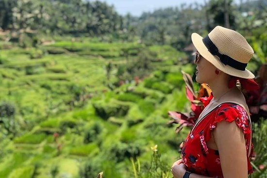 All-inclusive: The Top Places of Ubud...