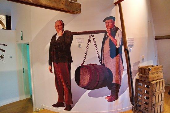 Brewery visit + free 25 cl Bourgogne des Flandres ( + 16y ): Bourgogne des Flandres