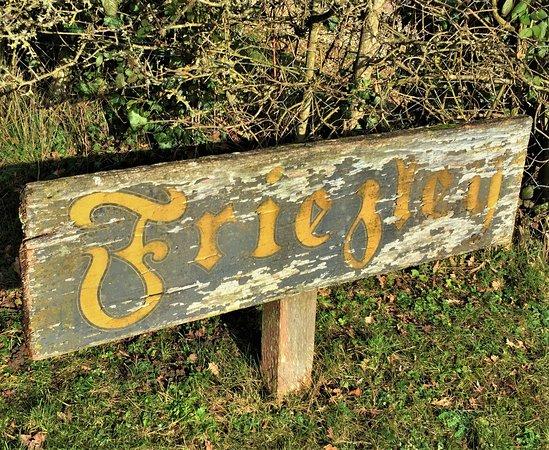 1.  Friezley Wood, Cranbrook, Kent