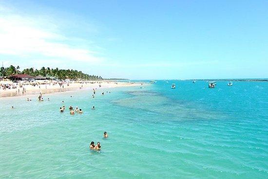 La costa sur de Playa del Francés con...