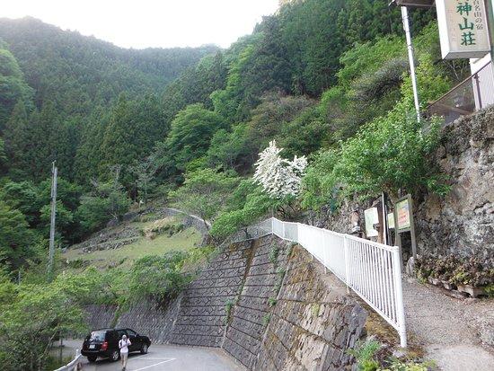 両神山(日向大谷口:両神山荘前)