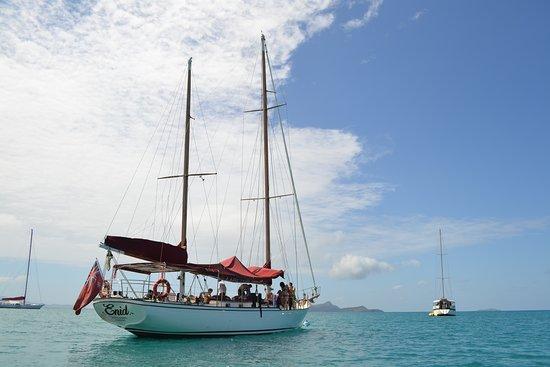 Sejltur med Lady Enid og Snorkeldagstur inklusiv Whitehaven Beach: Lady Enid