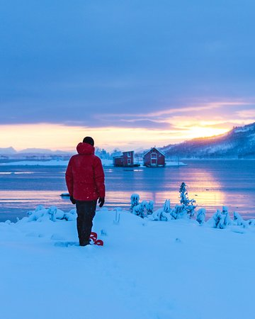 Winter tours - scenic drives, snowshoeing
