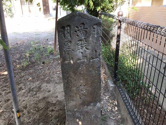 Honisshiki No Sekizo Dohyo