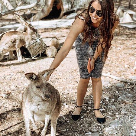 Sydney Top Tours