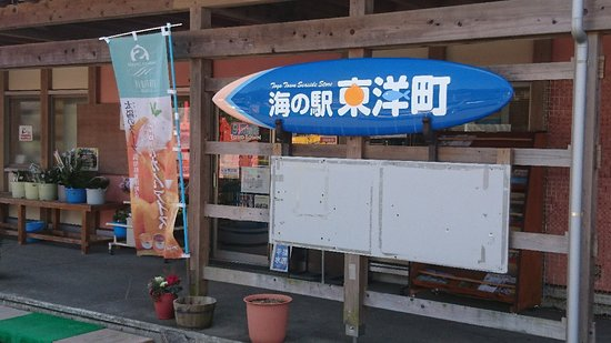 Toyo-cho, Japan: ポンカンアイス