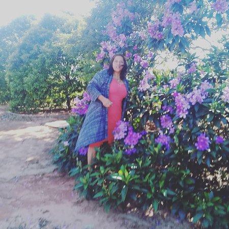 Astorga, PR: Jardins ppusada