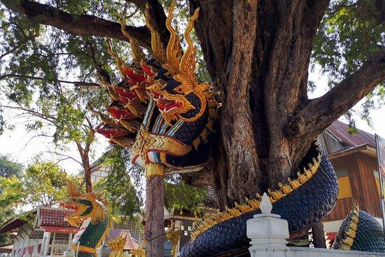 Khemmarat, Таиланд: Huge Naga