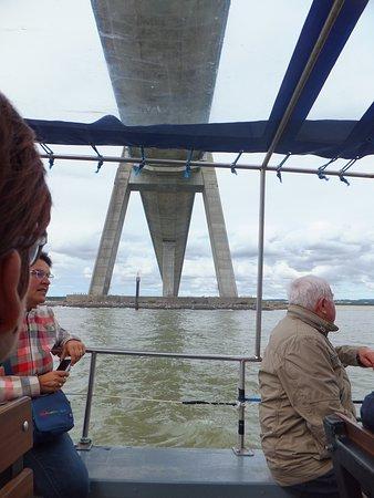 En bateau , sous le Pont de Normandie .