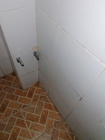 broken bathroom toiletpaperholder and dirty / moldy tiles