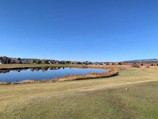 Meadows Course