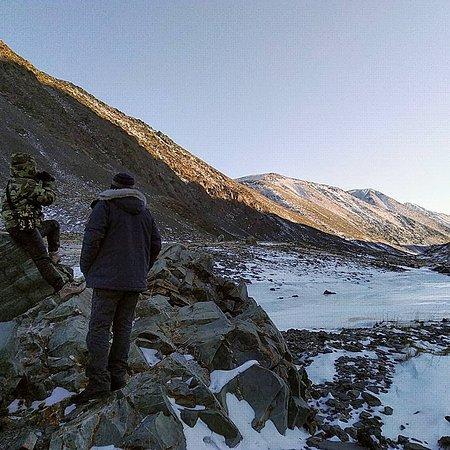 Kosh Agach, Ρωσία: Mountain Altai.  Turoy river Valley.  Wildlife watching.