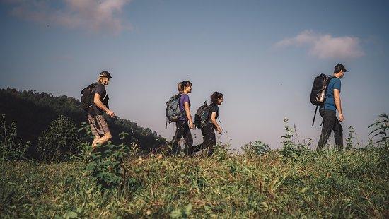 Hiking with MAO