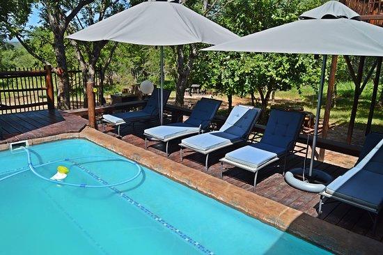 Krugerův národní park, Jihoafrická republika: Sparkling pool at Pan African Lodge and Safari, Marloth Park, South Africa