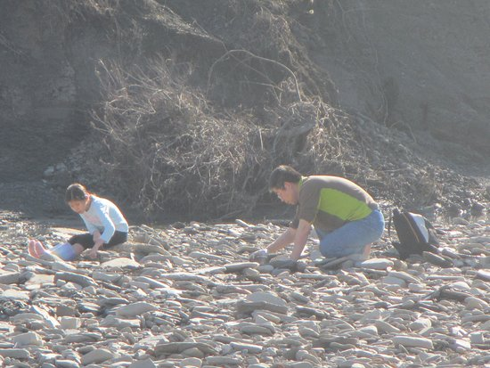 Ladonia, TX: Though we tended to look along the river, others found their treasures along the bank.