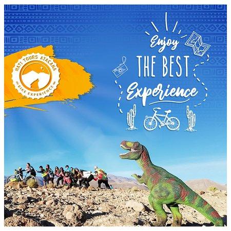 Hati Tours Atacama