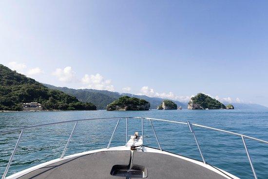 Buena Suerte con La Liliana - Picture of Liliana Boat Rental, Puerto Vallarta - Tripadvisor