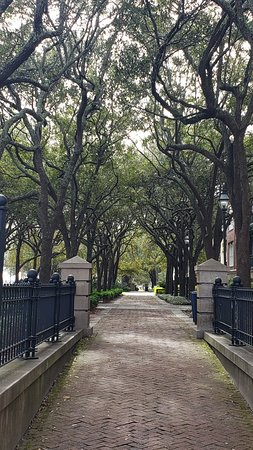 Fotografie 1-Hour Guided Carriage Tour of Charleston's Historic District
