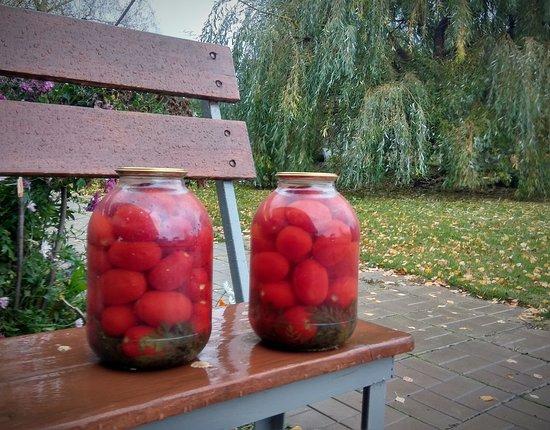 Новозавидовский, Россия: Осенью начинается пора заготовок. Рассол консервированных томатов можно продавать отдельно. Я его пью стаканами. Он невероятно вкусный..