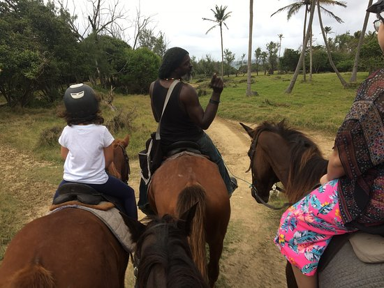 A ride on the stunning, beautiful, wild side of Barbados