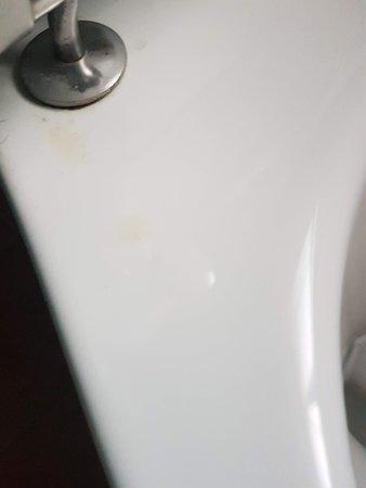 Top of toilet bowel.