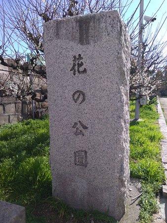 表示の石柱