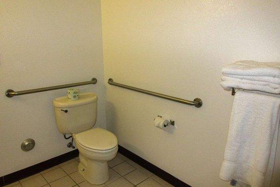 Sawyer, MI: Accessible bathroom