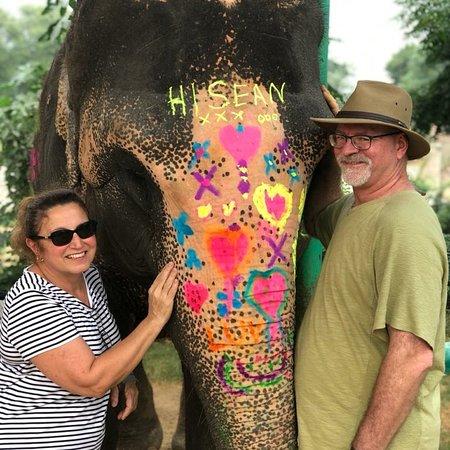 Elephant activity in Elephant village, Jaipur