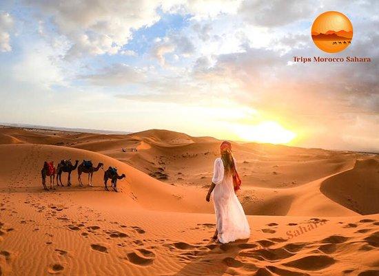 Trips Morocco Sahara
