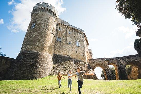 Chateau de Suze-la-Rousse