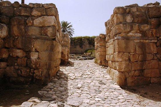 Armageddon Valley Private Tour fra Tel Aviv