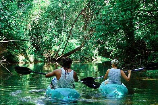 Kayak et randonnée