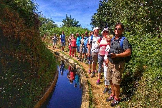 Marche d'une demi-journée - Levada dos Prazeres