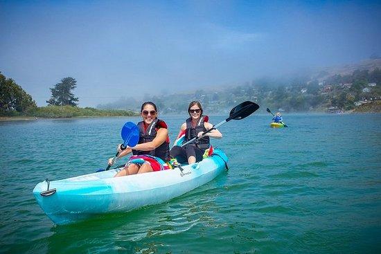 Russian River Kayak Tour på den...