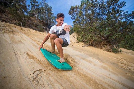 Stray Australia: Cairns to Sydney...
