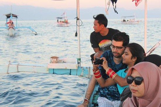 Besuchen Sie Balis wilde Delfine in Lovina inklusive Git Git Wasserfall und Tempel Foto