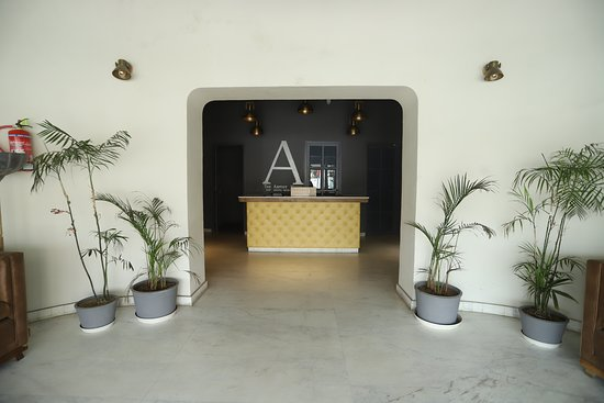 Situated in the heart of Udaipur City, The Artist House is just the place to be. The best stay cum recreation place with astonishing ambience and range of appetising foods and exciting drinks, The place offers 29 bedrooms, separate club space, themed café, restaurant, bar, co-working space, pizzeria, and one large tropical pool. The place is designed with the maximum use of the natural resources which brings fresh air and light to the guests. The atmosphere created by such resources is more than