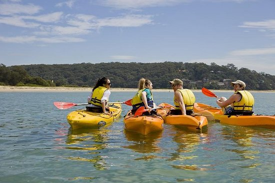 Beginner's Kayak Tour in Sydney...
