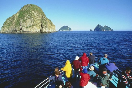 Seward Shore Excursion: Resurrection Bay Cruise Including Lunch on...