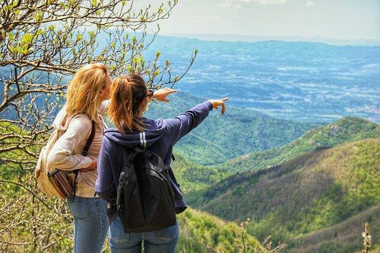 Ảnh về Via Maestra Trekking - Ảnh về Reggello - Tripadvisor