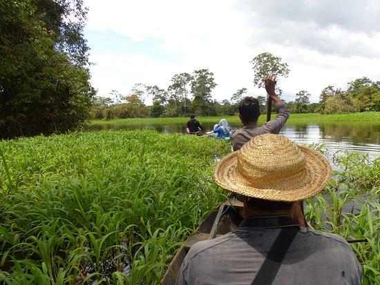 Amazon Deep Jungle Tours