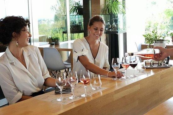 Lambrusco wine and Balsamic vinegar tasting in Castelvetro di Modena