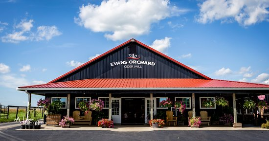 Evans Orchard & Cider Mill