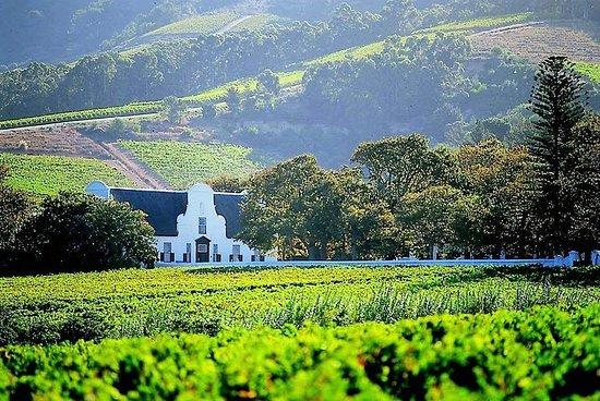 Cape Winelands privétour