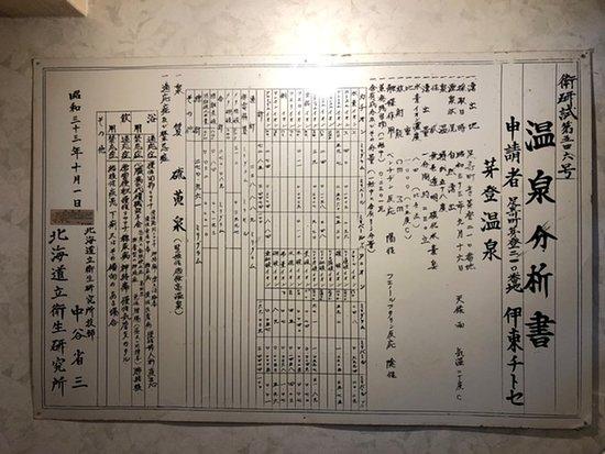 Meto Onsen: 芽登温泉成分分析書